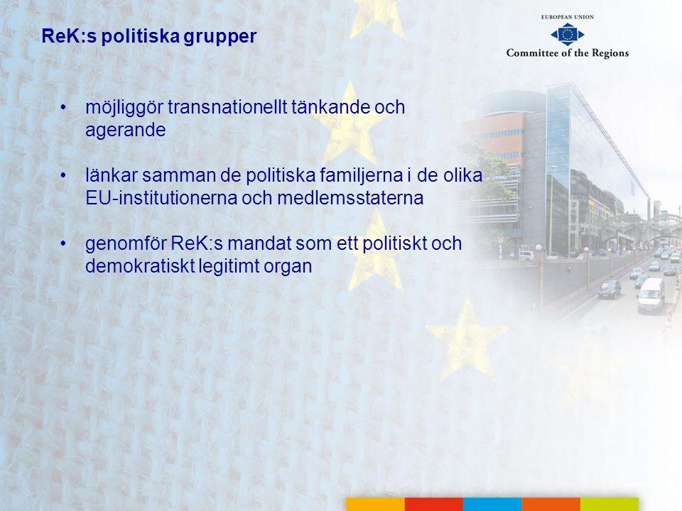 ReK:s politiska grupper