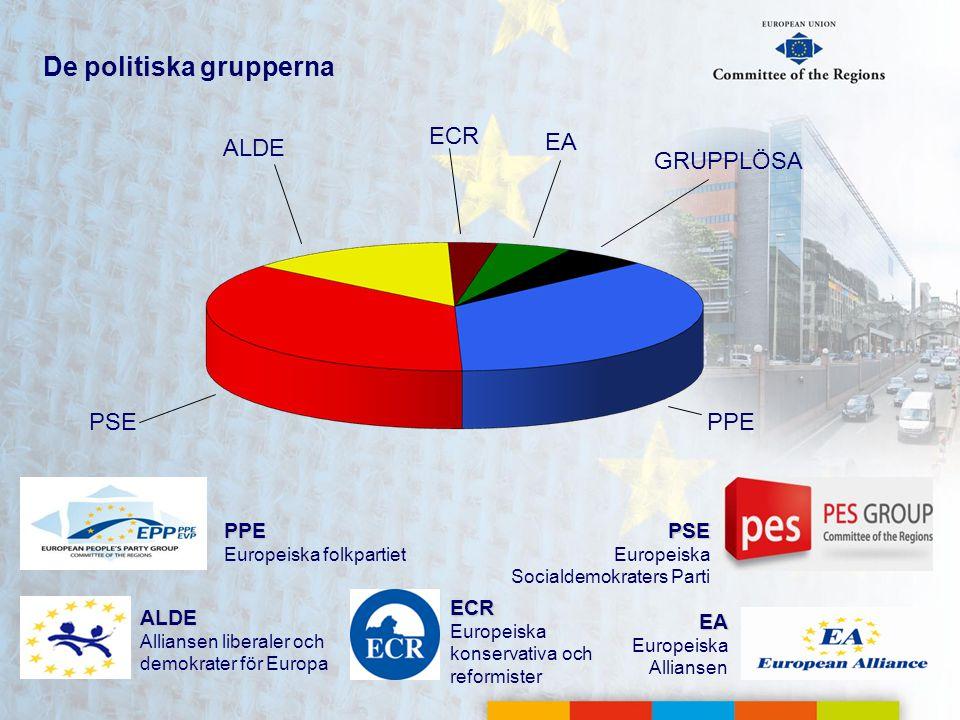 De politiska grupperna