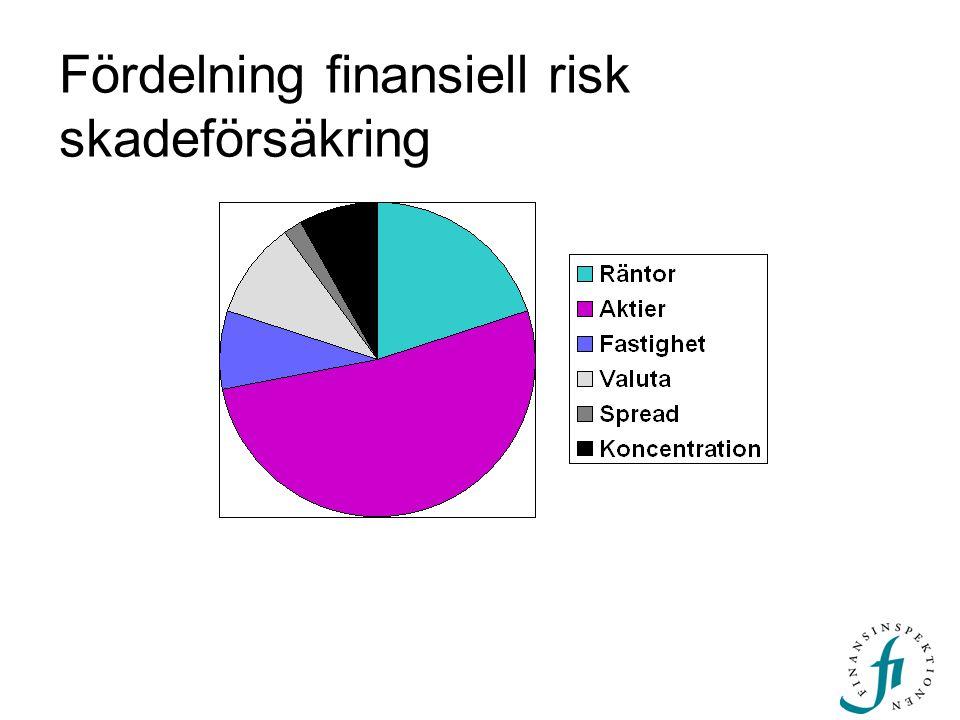Fördelning finansiell risk skadeförsäkring