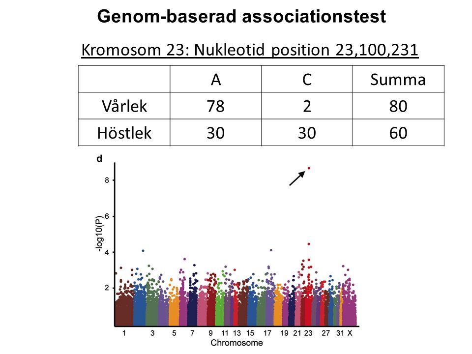 Genom-baserad associationstest