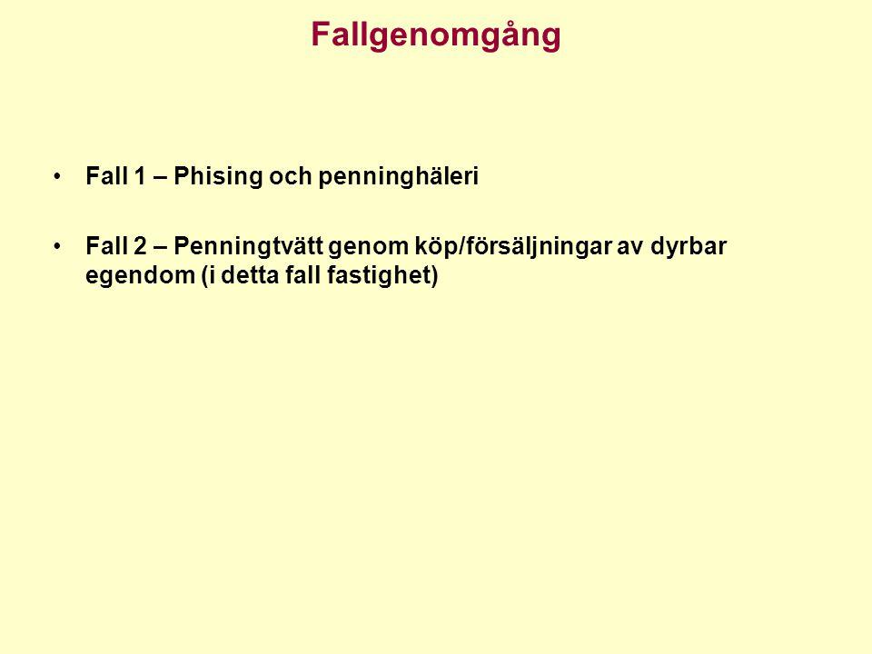 Fallgenomgång Fall 1 – Phising och penninghäleri