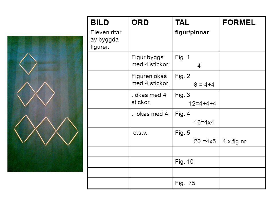 BILD ORD TAL FORMEL Eleven ritar av byggda figurer. figur/pinnar