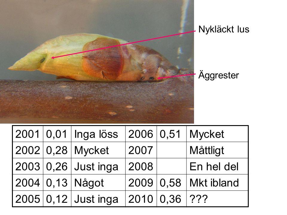 2001 0,01 Inga löss 2006 0,51 Mycket 2002 0,28 2007 Måttligt 2003 0,26