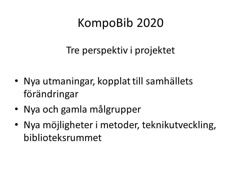 Tre perspektiv i projektet