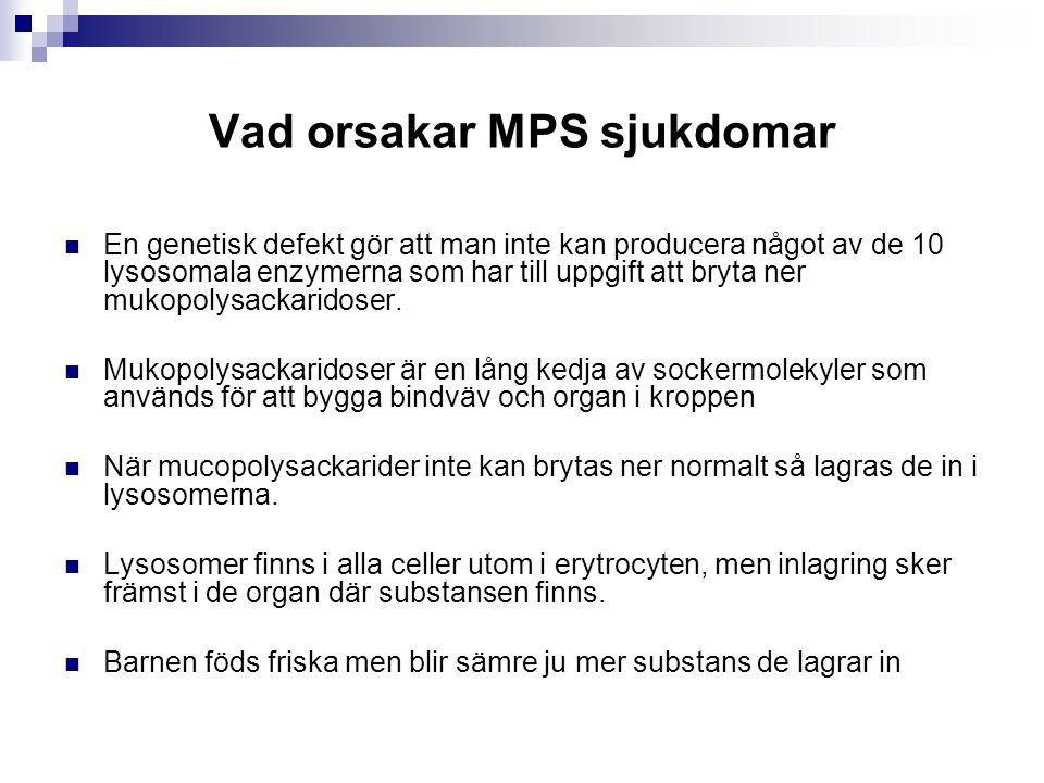 Vad orsakar MPS sjukdomar