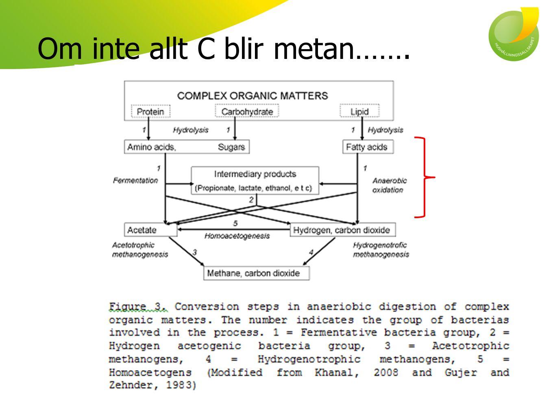Om inte allt C blir metan…….
