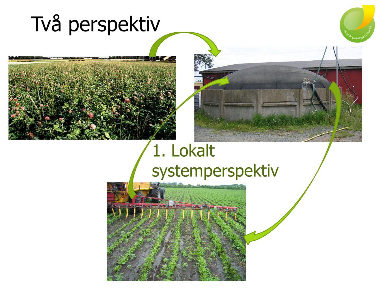 Två perspektiv 1. Lokalt systemperspektiv