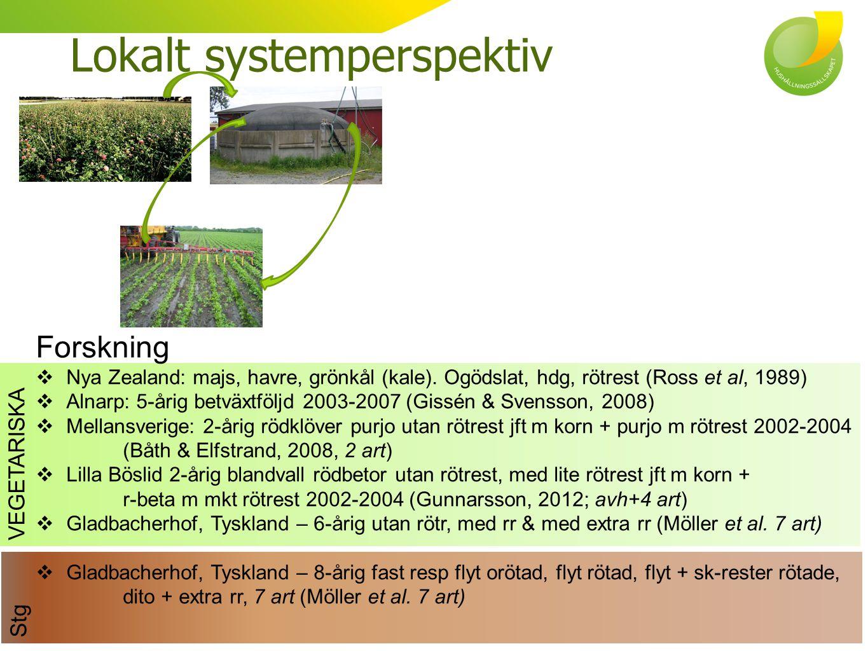 Lokalt systemperspektiv