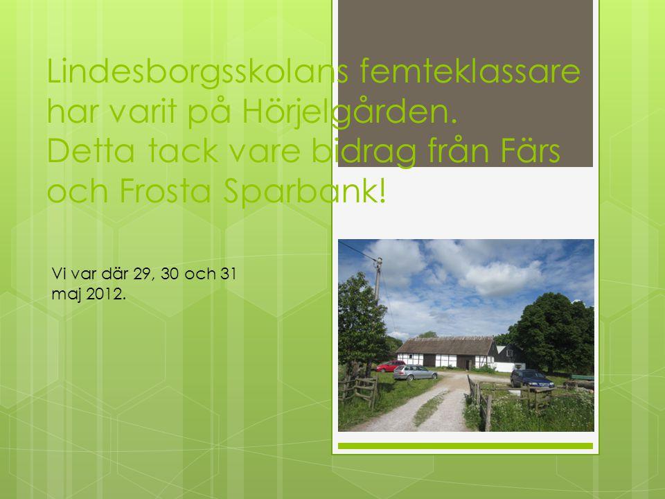 Lindesborgsskolans femteklassare har varit på Hörjelgården