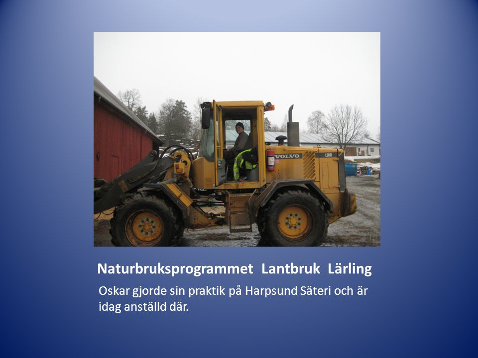 Naturbruksprogrammet Lantbruk Lärling