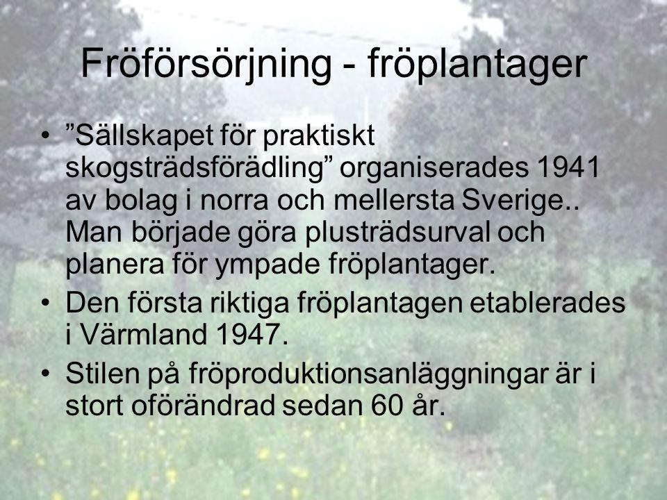 Fröförsörjning - fröplantager