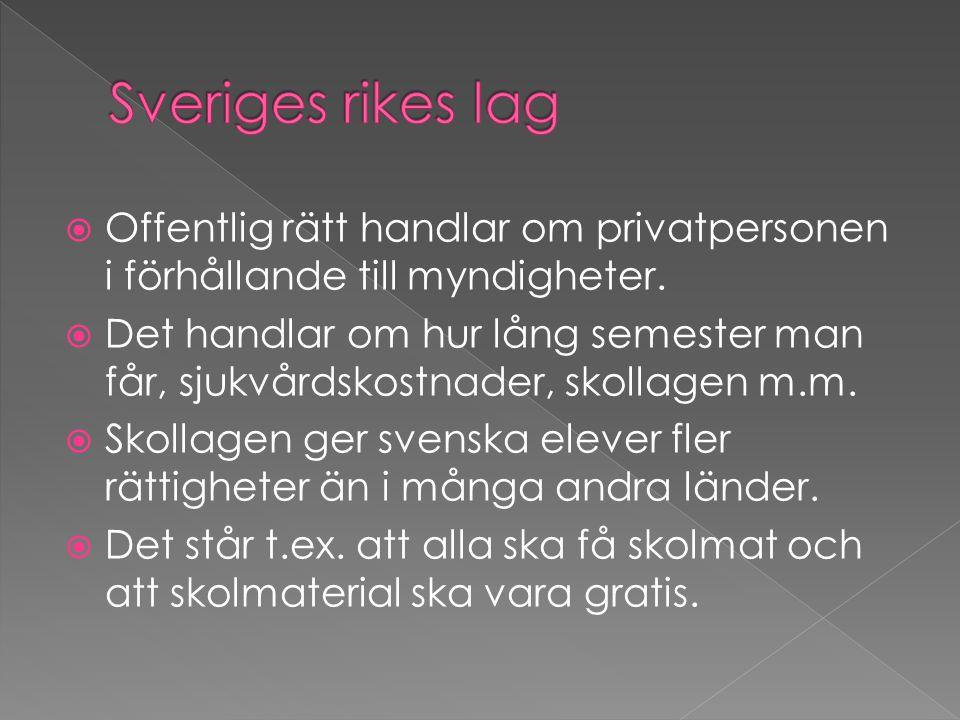 Sveriges rikes lag Offentlig rätt handlar om privatpersonen i förhållande till myndigheter.