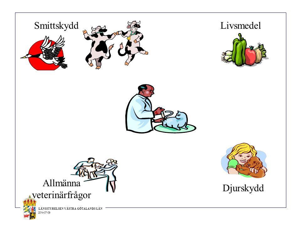 Allmänna veterinärfrågor