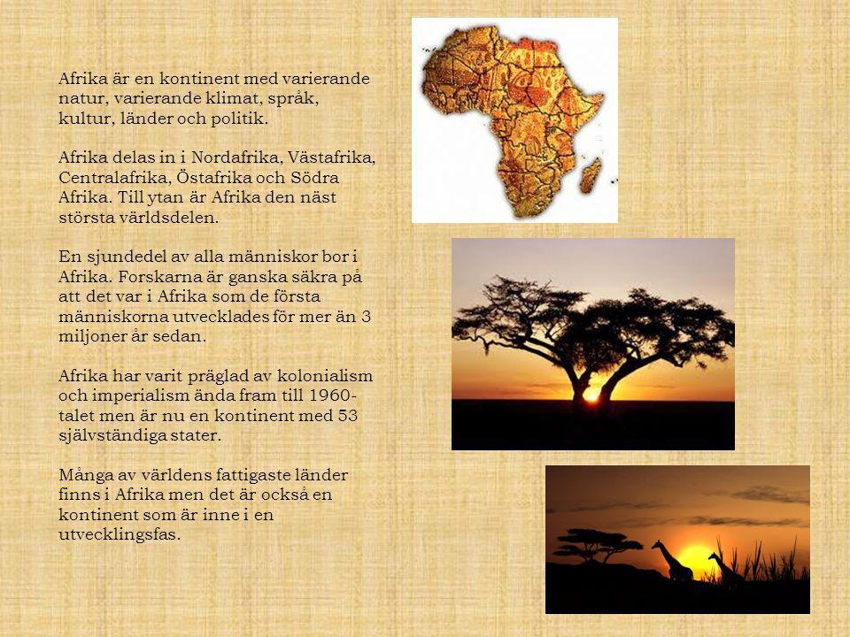 Afrika är en kontinent med varierande natur, varierande klimat, språk, kultur, länder och politik.