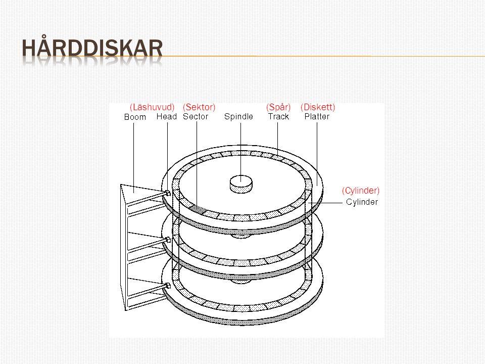 hårddiskar (Läshuvud) (Sektor) (Spår) (Diskett) (Cylinder)