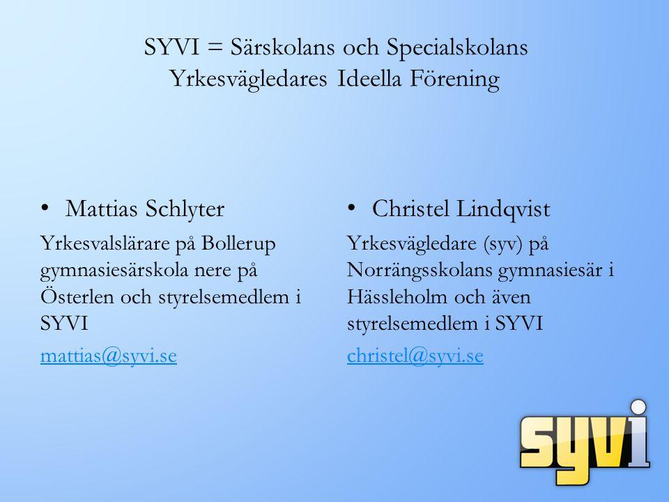 SYVI = Särskolans och Specialskolans Yrkesvägledares Ideella Förening
