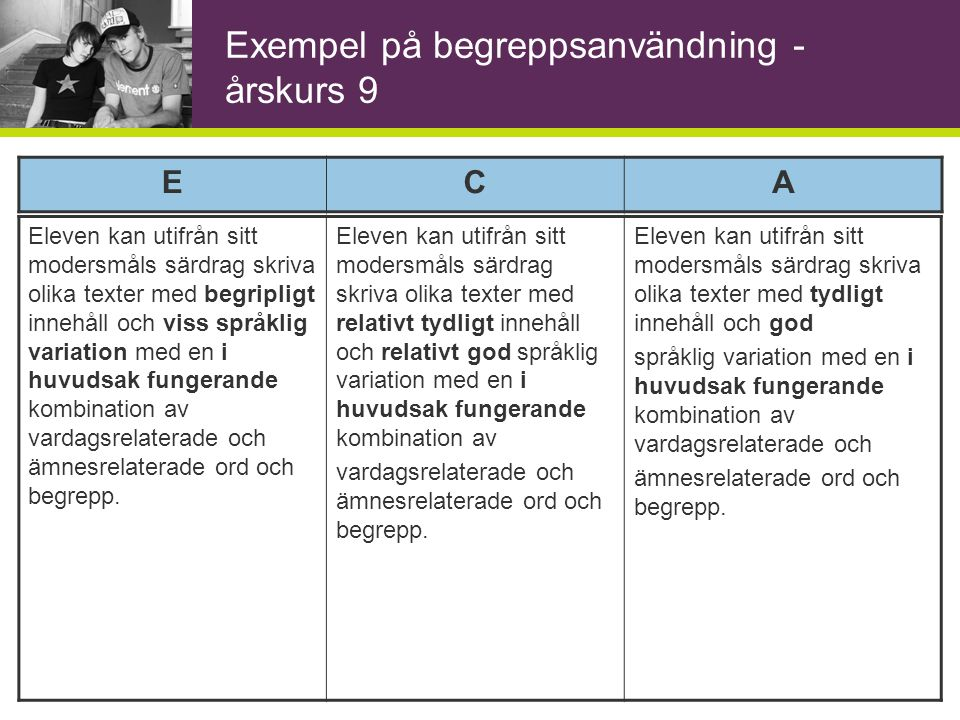 Exempel på begreppsanvändning - årskurs 9