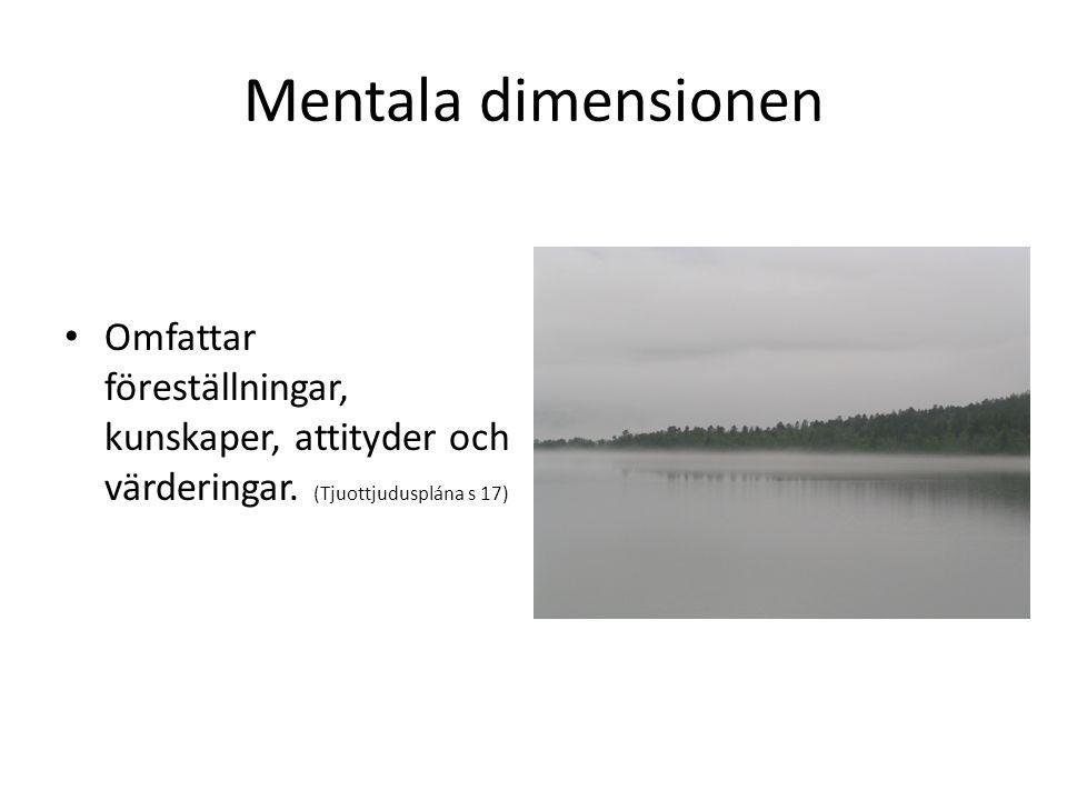 Mentala dimensionen Omfattar föreställningar, kunskaper, attityder och värderingar.