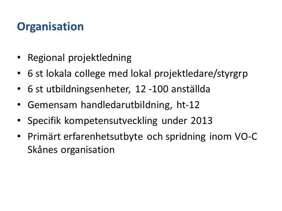 Organisation Regional projektledning