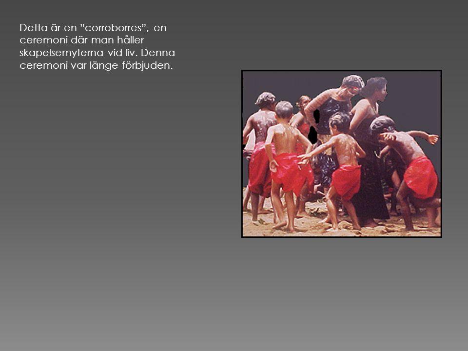 Detta är en corroborres , en ceremoni där man håller skapelsemyterna vid liv.