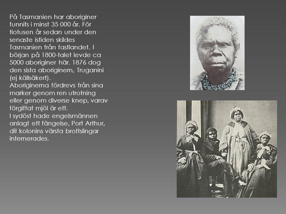 På Tasmanien har aboriginer funnits i minst 35 000 år