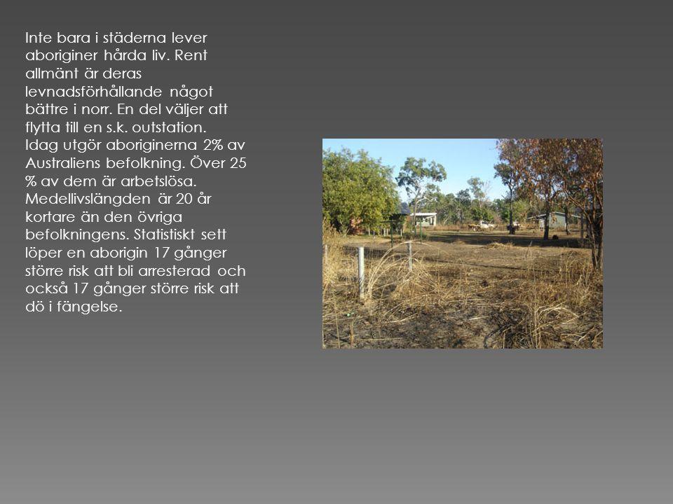 Inte bara i städerna lever aboriginer hårda liv