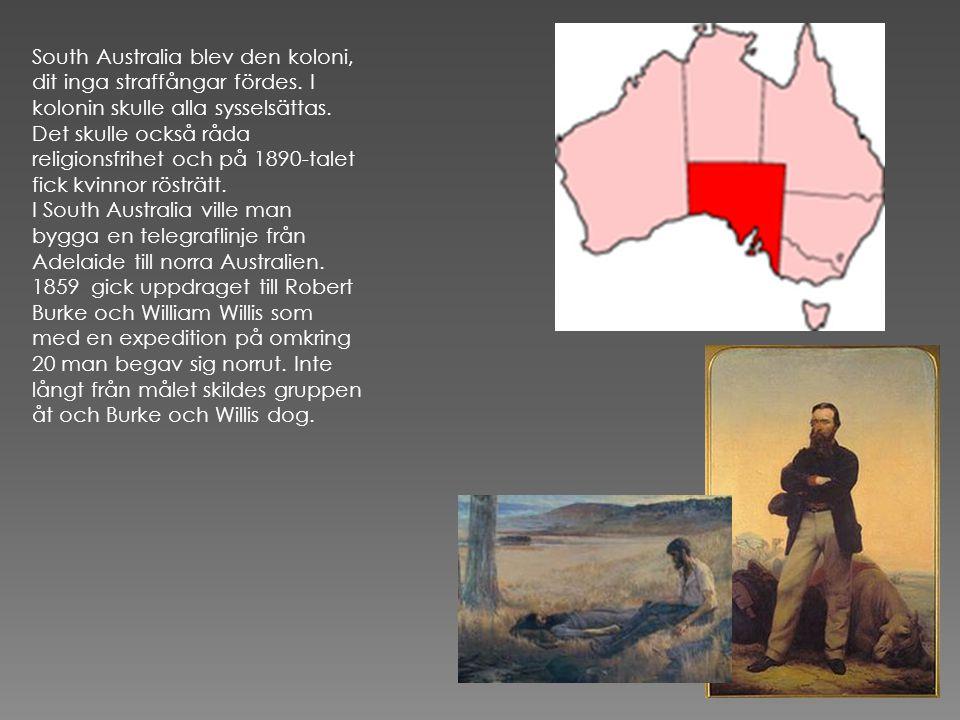 South Australia blev den koloni, dit inga straffångar fördes