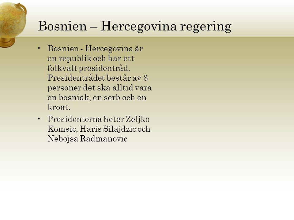 Bosnien – Hercegovina regering