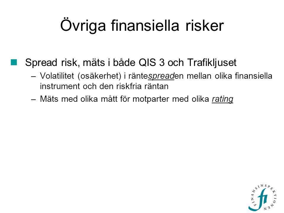 Övriga finansiella risker