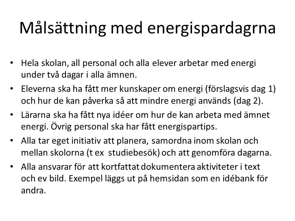 Målsättning med energispardagrna