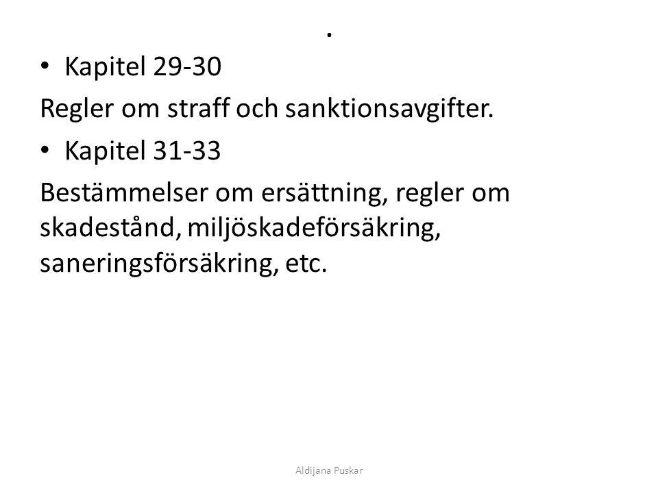 . Kapitel 29-30 Regler om straff och sanktionsavgifter. Kapitel 31-33