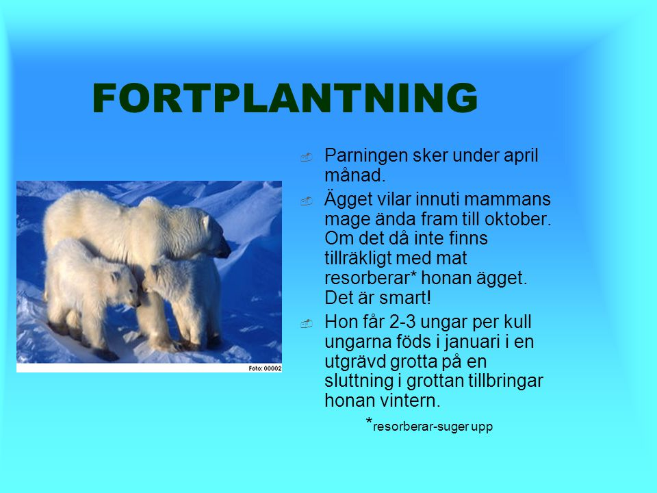 FORTPLANTNING Parningen sker under april månad.
