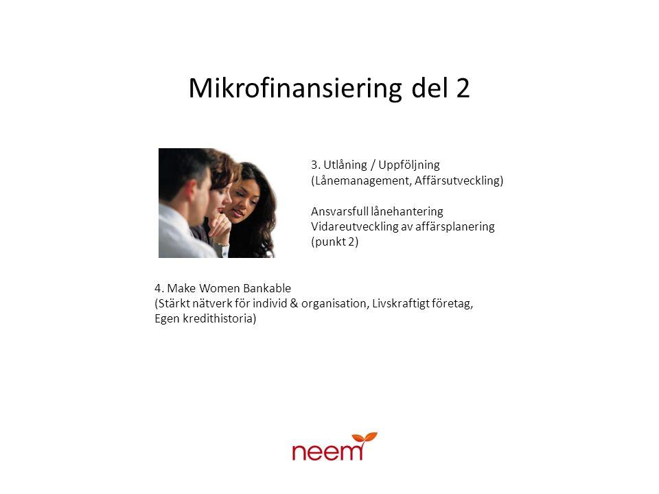 Mikrofinansiering del 2