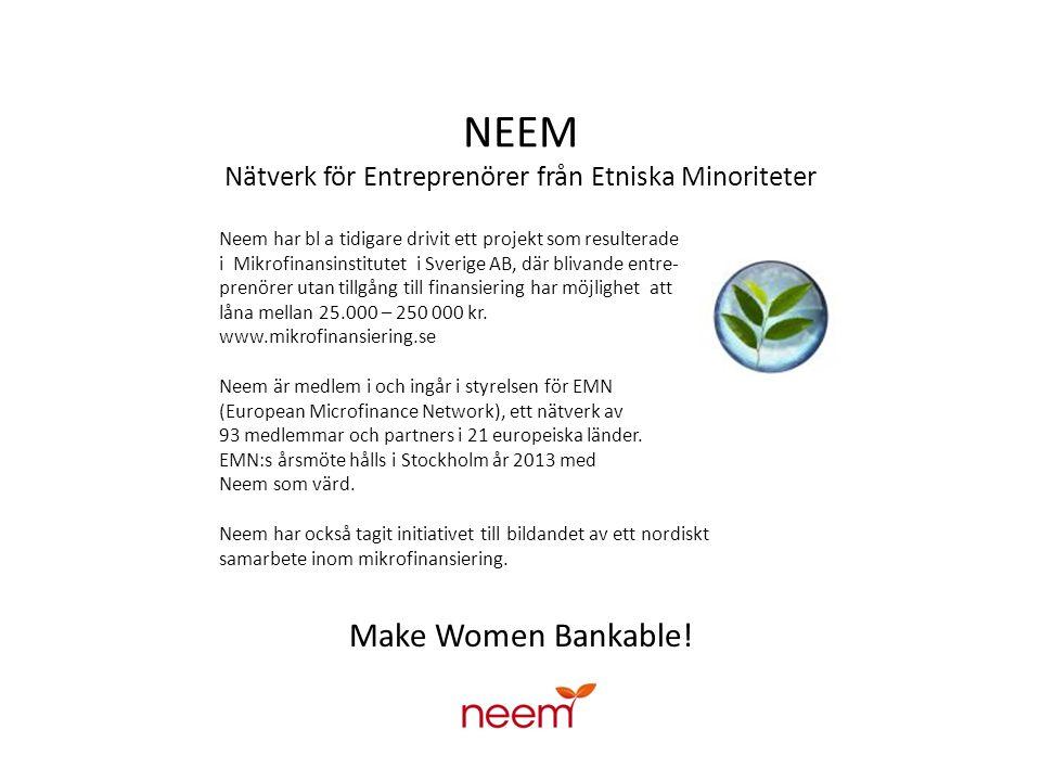 NEEM Nätverk för Entreprenörer från Etniska Minoriteter