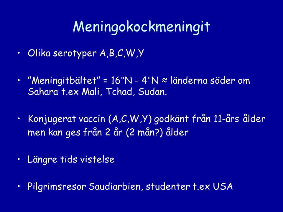 Meningokockmeningit Olika serotyper A,B,C,W,Y