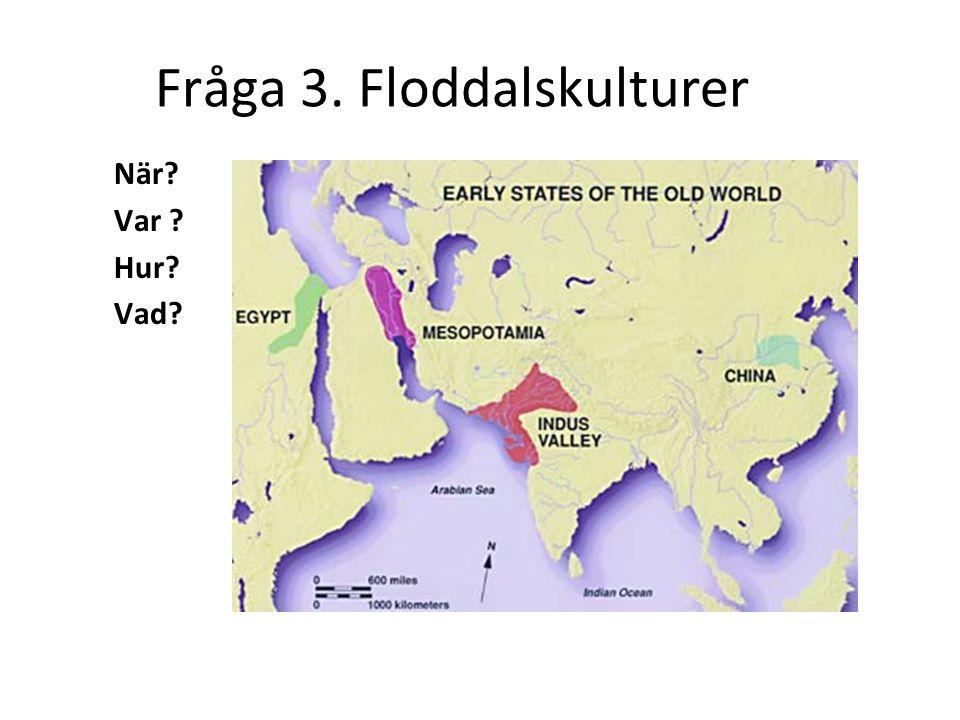 Fråga 3. Floddalskulturer