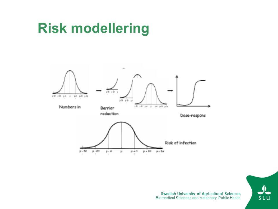 Risk modellering