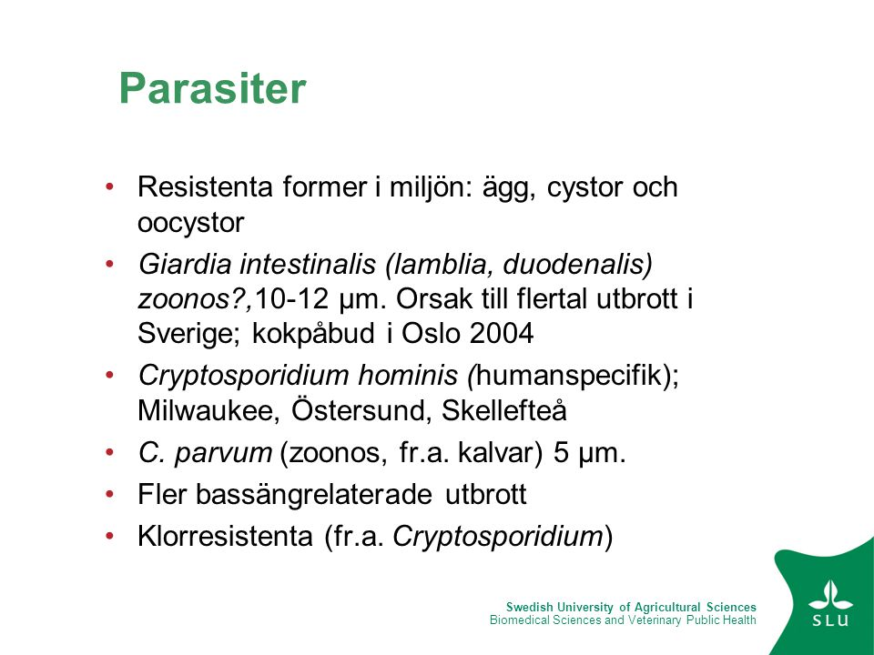 Parasiter Resistenta former i miljön: ägg, cystor och oocystor