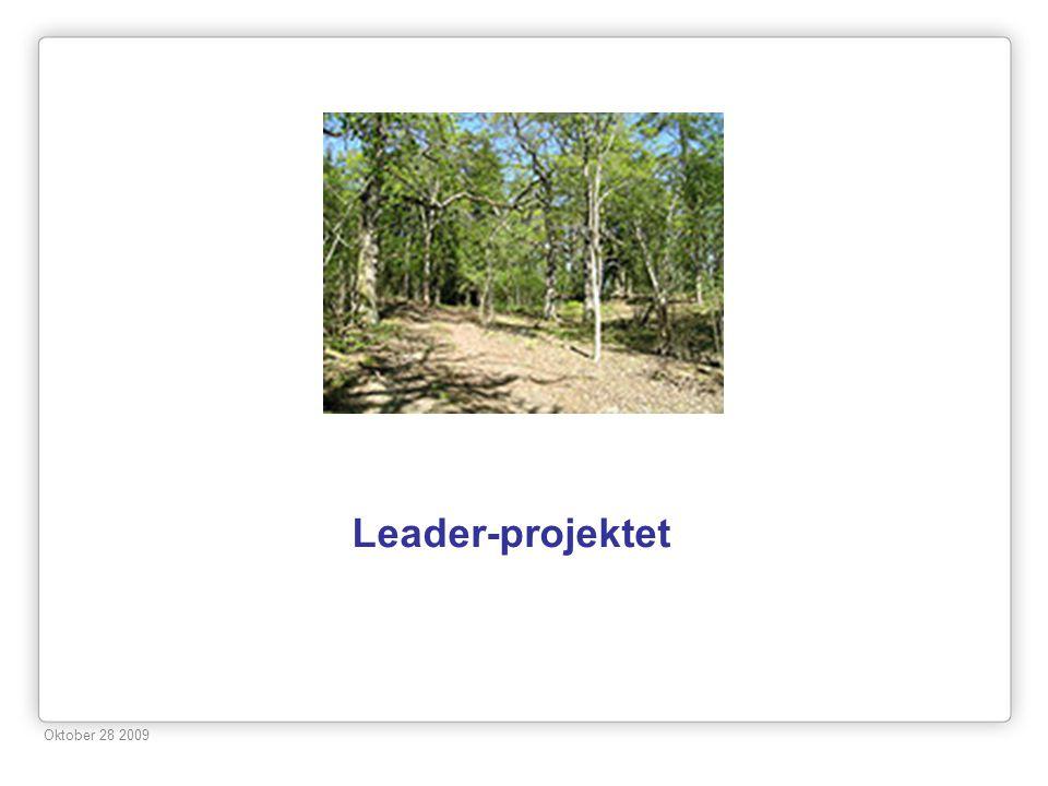 Leader-projektet Oktober 28 2009 8