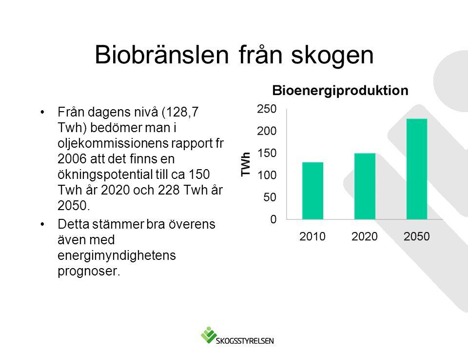 Biobränslen från skogen