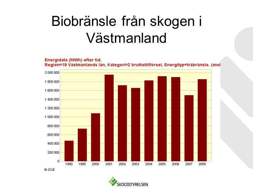 Biobränsle från skogen i Västmanland