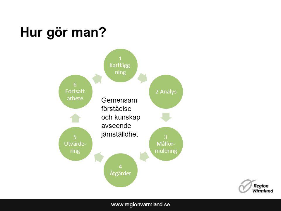 Hur gör man Gemensam förståelse och kunskap avseende jämställdhet