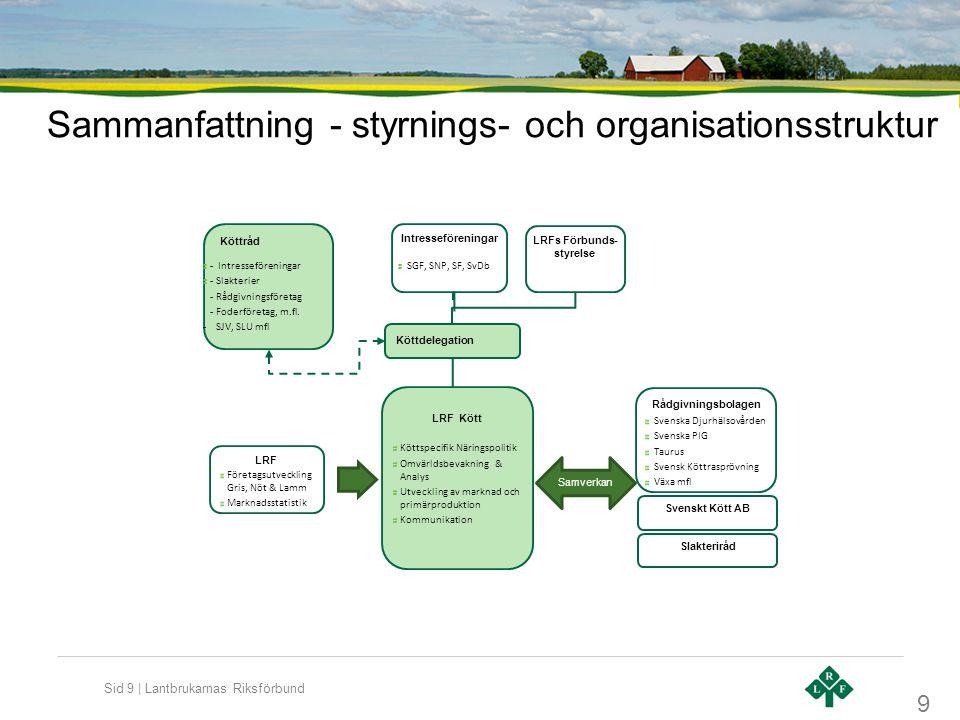 Sammanfattning - styrnings- och organisationsstruktur