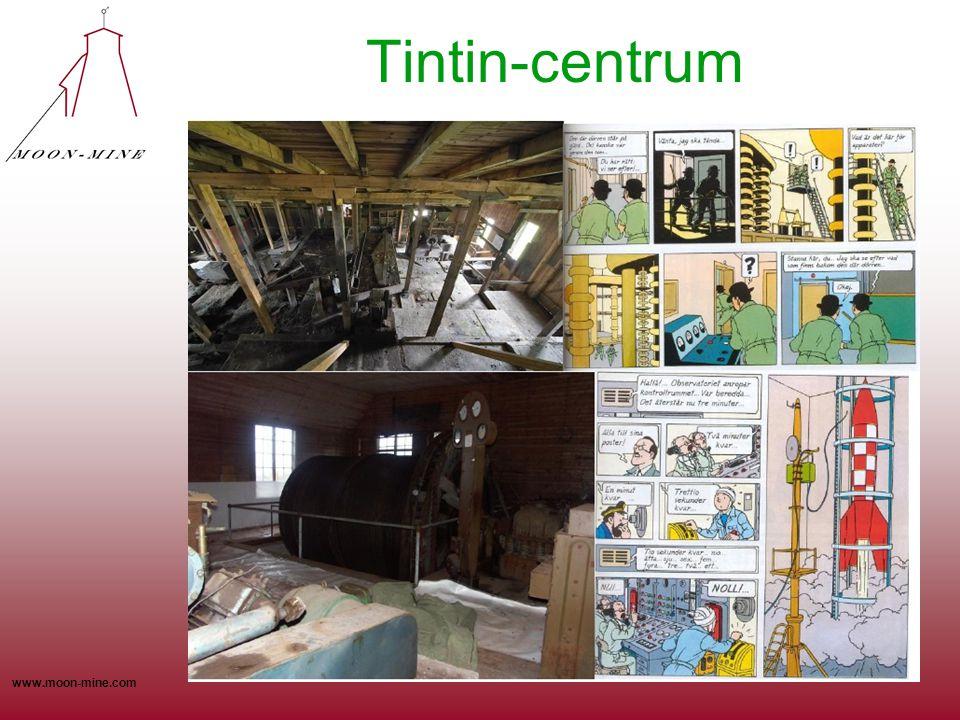 Tintin-centrum