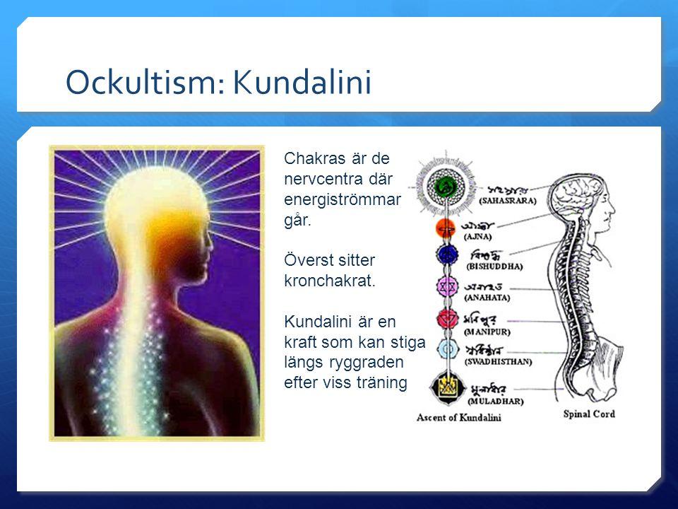 Ockultism: Kundalini Chakras är de nervcentra där energiströmmar går.