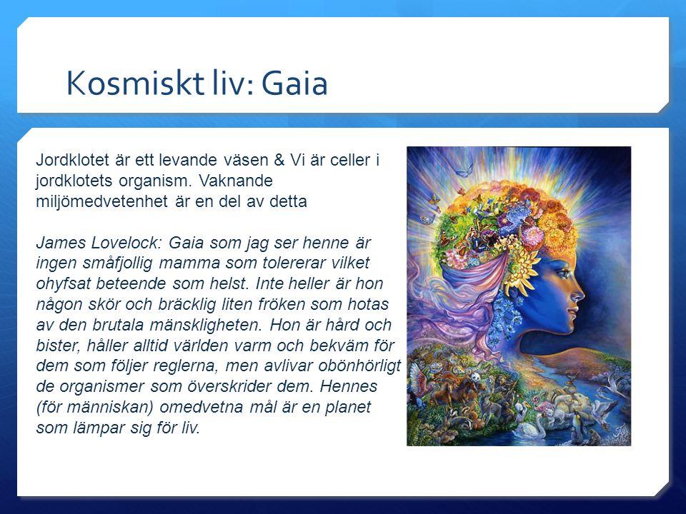 Kosmiskt liv: Gaia Jordklotet är ett levande väsen & Vi är celler i jordklotets organism. Vaknande miljömedvetenhet är en del av detta.