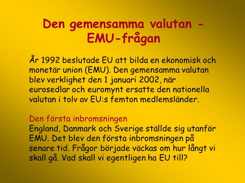 Den gemensamma valutan - EMU-frågan