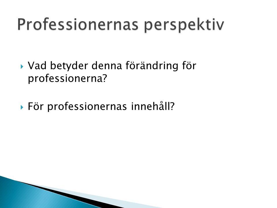 Professionernas perspektiv