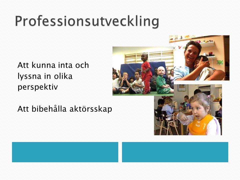 Professionsutveckling