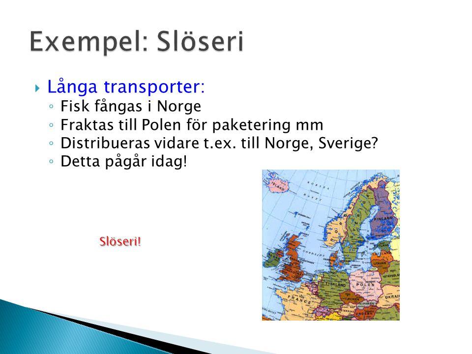 Exempel: Slöseri Långa transporter: Fisk fångas i Norge